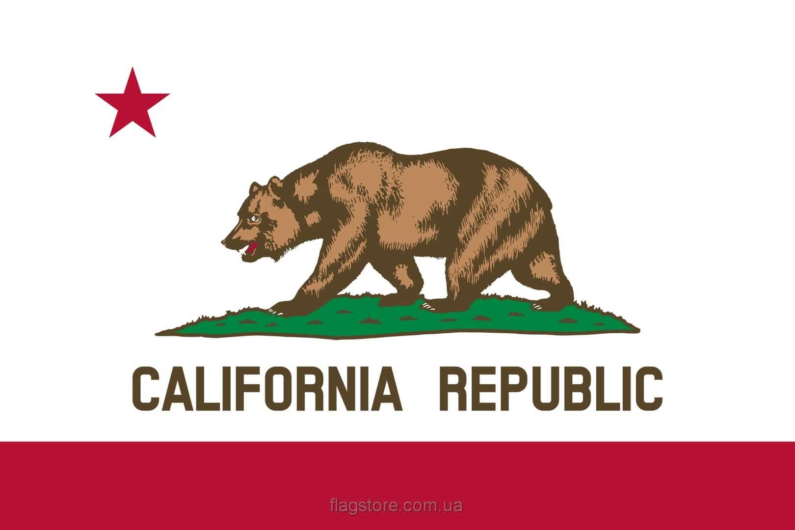 Купить флаг Калифорнии (штата Калифорния)