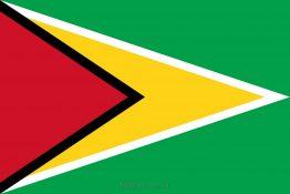 Купити прапор Гаяни (країни Гаяна)